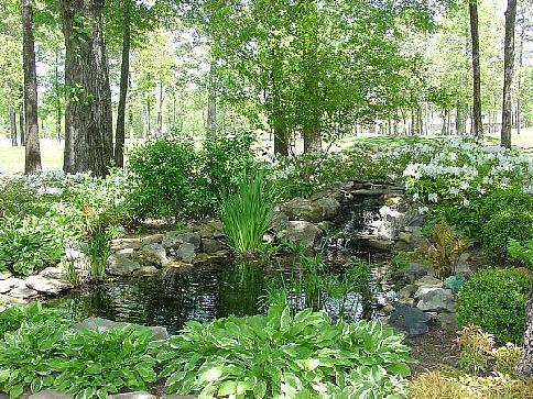 Ideal Landscape Solutions